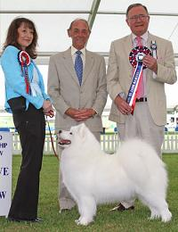 Reserve Best in Show 2012