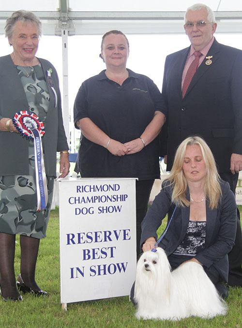 Reserve Best in Show 2013