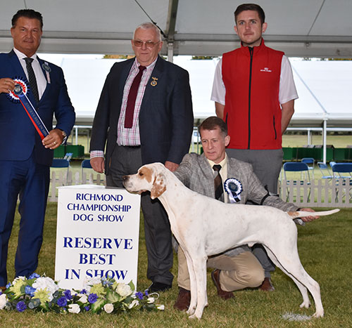 Reserve Best in Show Image
